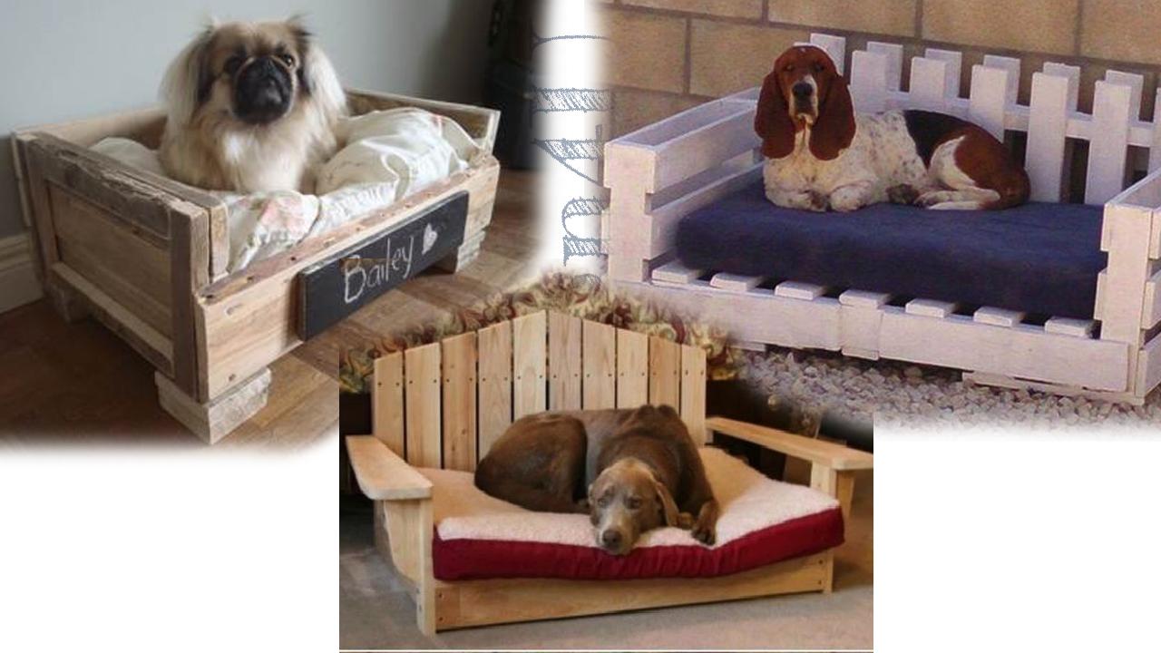 Cucce Design Per Cani diy cuccia per cani e gatti – design4u